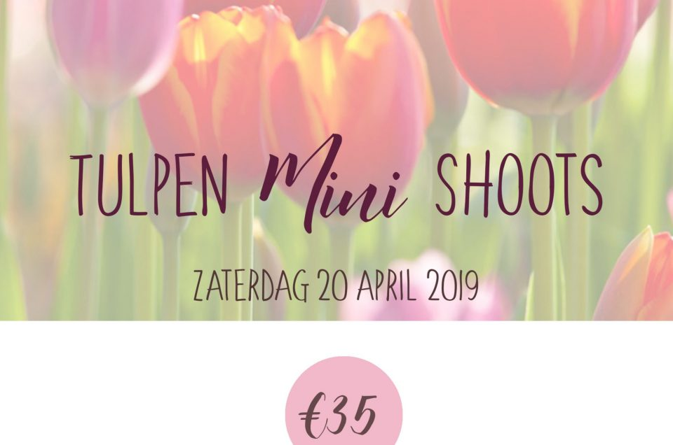 RESERVEER NU: 20 april >>Tulpen Mini Fotoshoots